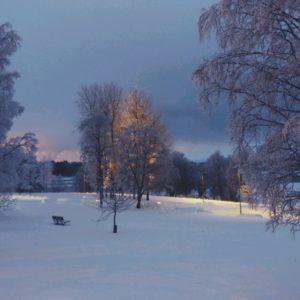 Talvinen Oulu 2019